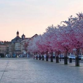"Unsere ""Favourites"" mitten in Bordeaux"